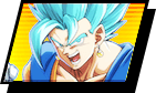 select_vegetto_on.png